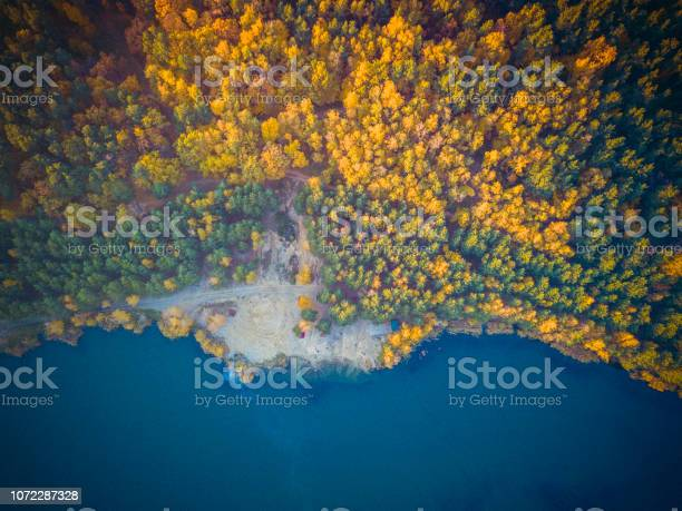 Photo of Autumn forest with road