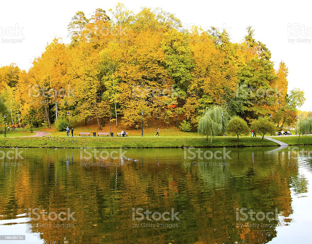 autumn forest with symmetric reflection in lake royalty-free stock photo