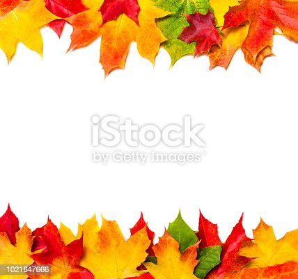 istock Autumn frame composition made of autumn leaves on white background with Copy space.  Flat lay, top view