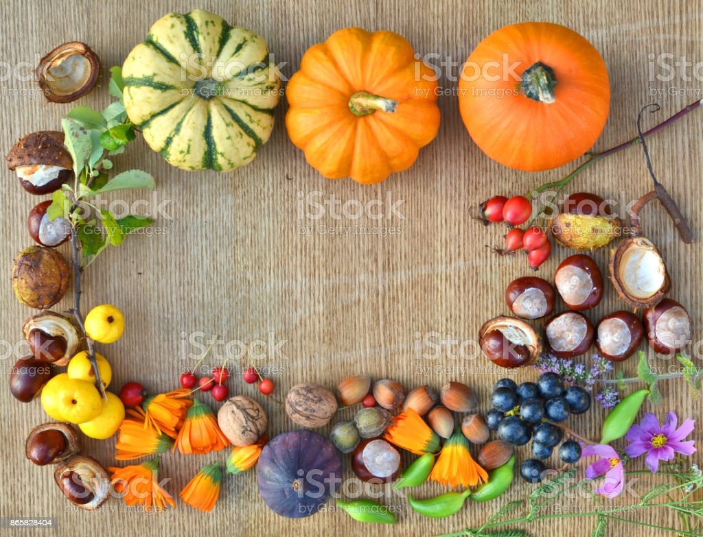 Autumn frame made of pumpkins, fruits and nuts stock photo
