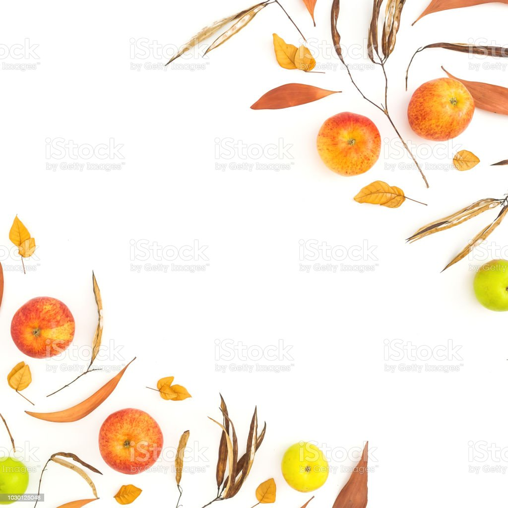 Autumn frame of fall yellow and red apple fruits on white background. Flat lay, top view. Thanksgiving day. stock photo