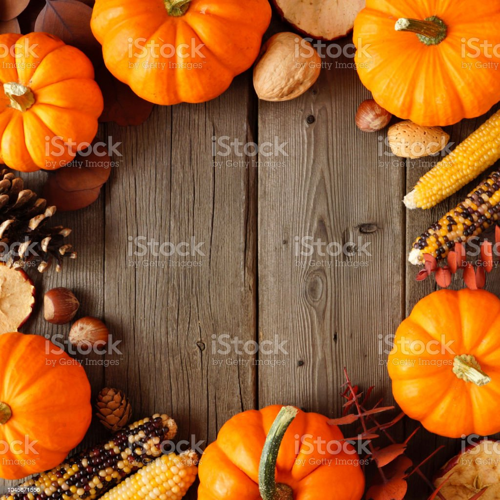 Autumn frame of pumpkins and decor on rustic wood stock photo