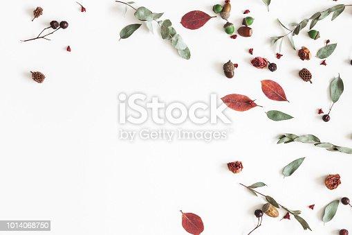 istock Autumn frame on white background. Flat lay, top view 1014068750