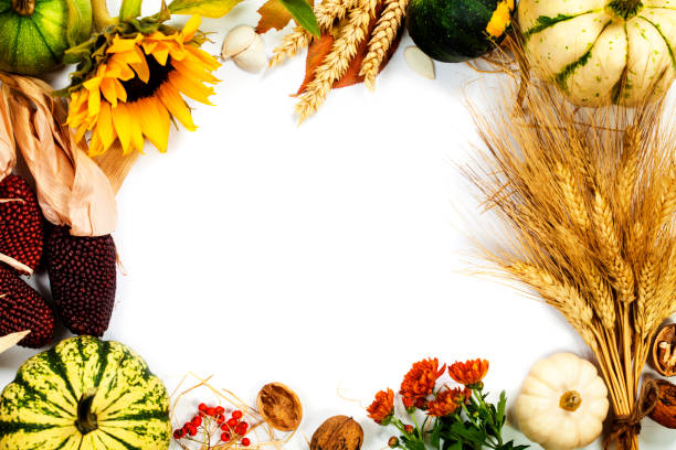 Autumn frame over white. Thanksgiving day, harvesting or autumn concept, space for text