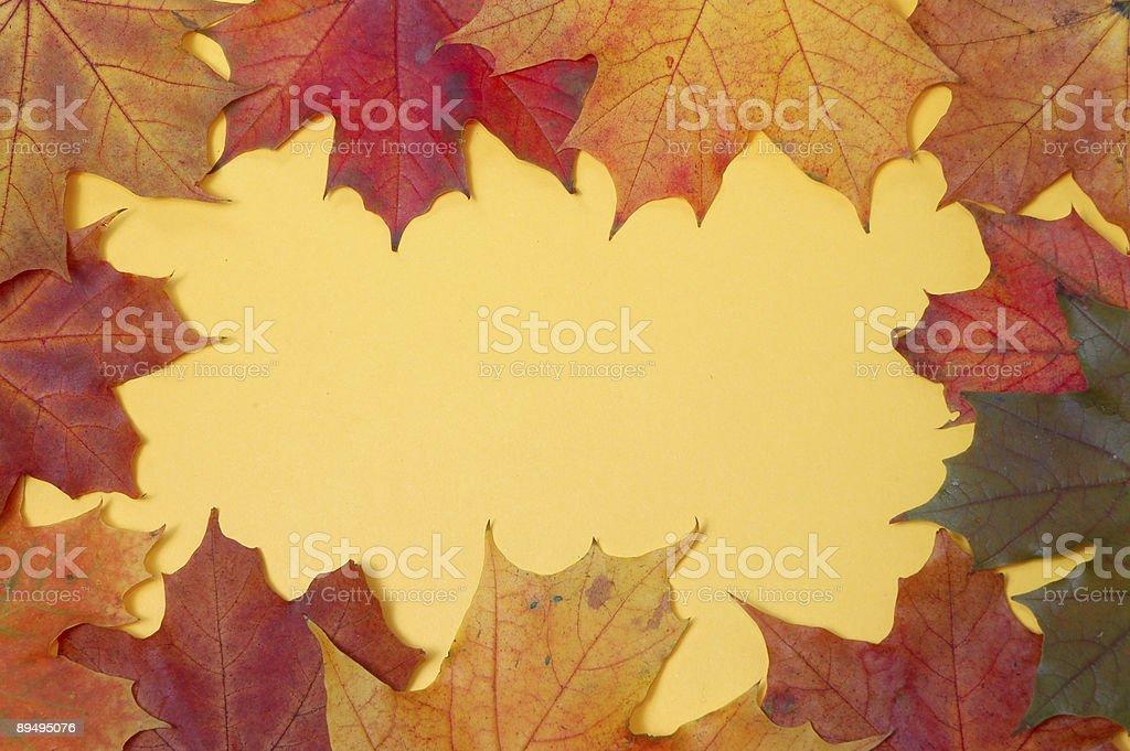 autumn frame royalty-free stock photo