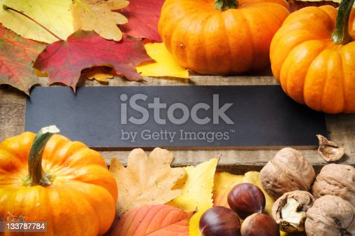 istock Autumn frame with pumpkins, walnuts and leaves 133787784