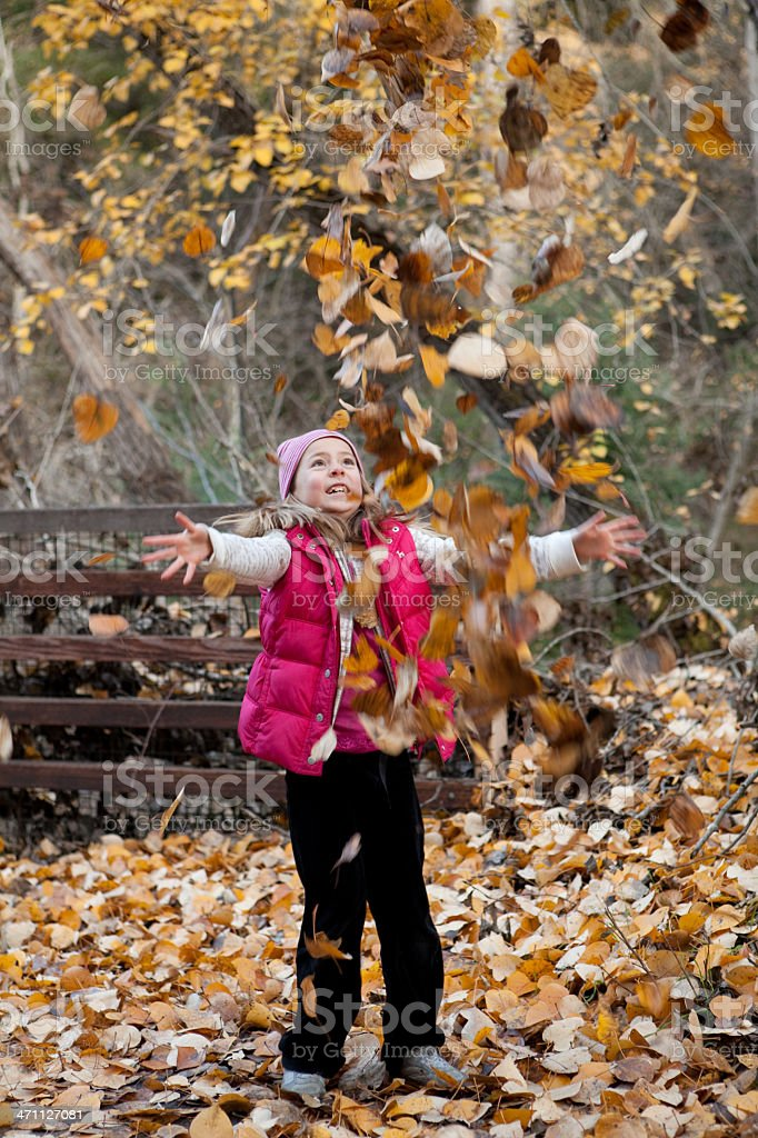 Autumn Frolicking stock photo