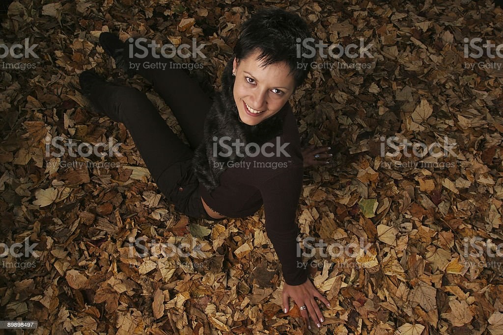 Autumn from above royalty free stockfoto
