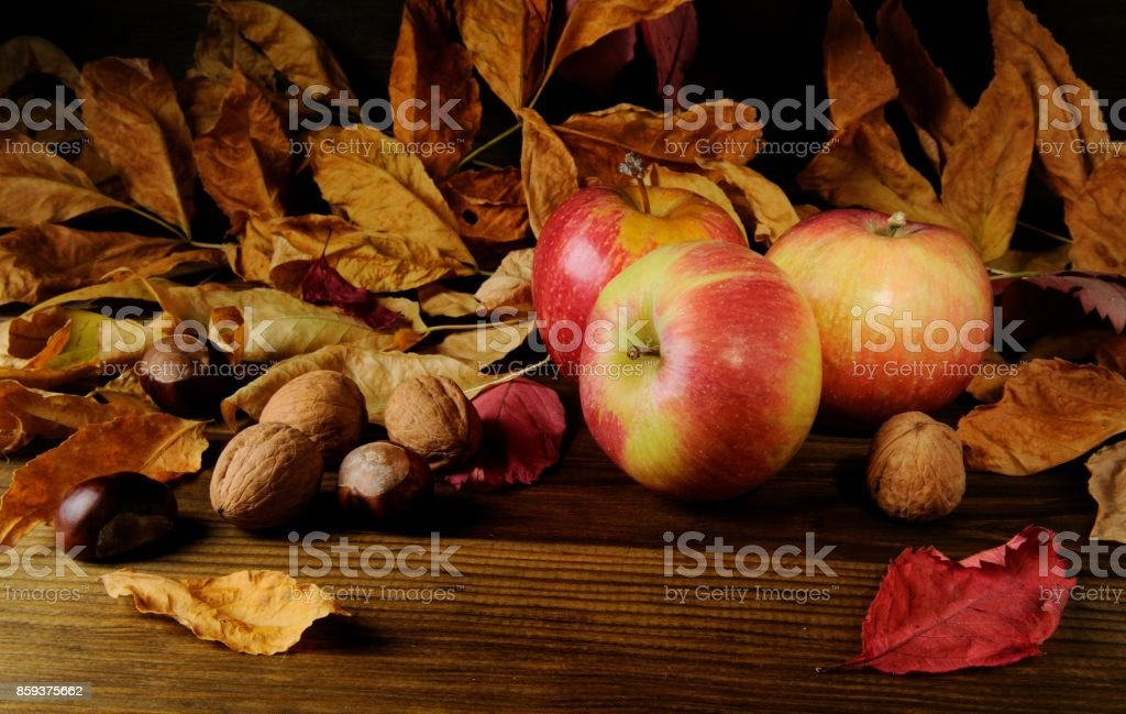 Autumn Fruits and Nuts stock photo