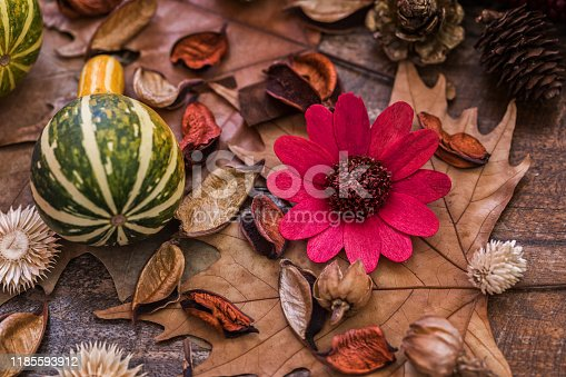 Autumn fruits at wood board, close-up, no people