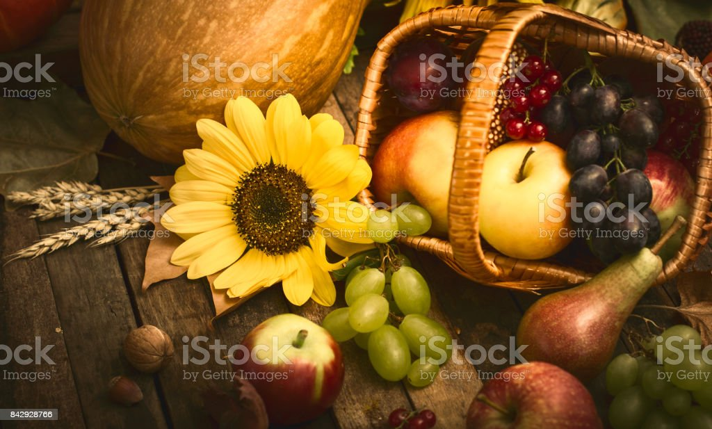 Autumn fruits in the basket stock photo