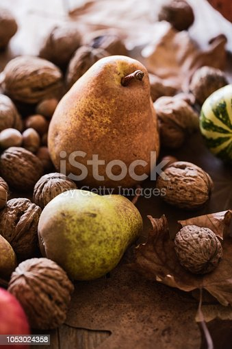 Autumn fruits background, ripen pear with apples, walnuts, hazelnuts and decorative pumpkins. Close-up, selective focus