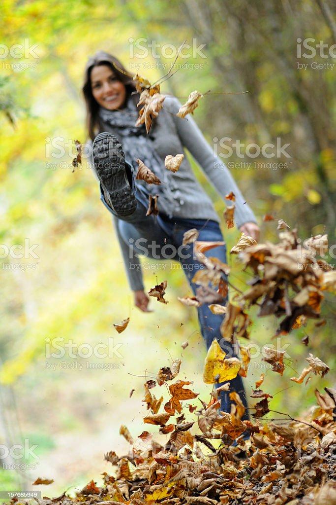 Autumn Fun (XXXL) royalty-free stock photo