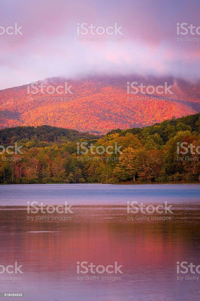 Autumn glow stock photo