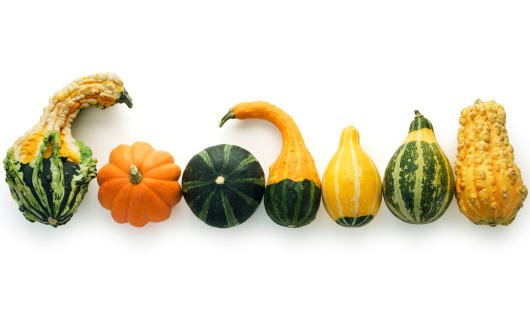 Subject: Various colorful autumn gourds isolated on a white background