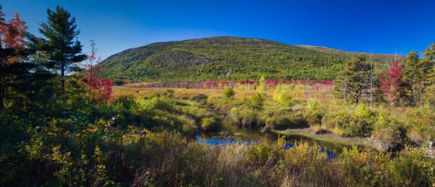 Autumn, Great Meadow, Acadia National Park, Maine stock photo