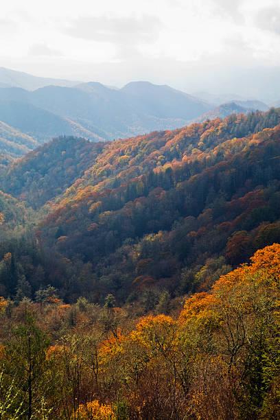 Autumn, Great Smoky Mountains NP stock photo