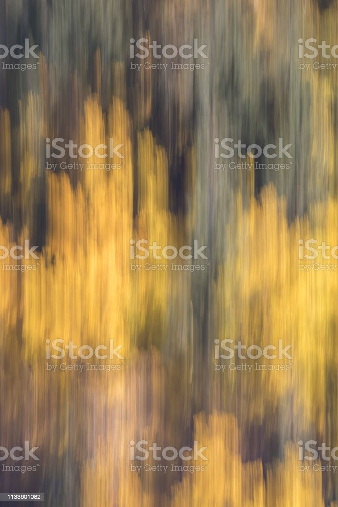 Autumn green and yellow colors abstract stock photo