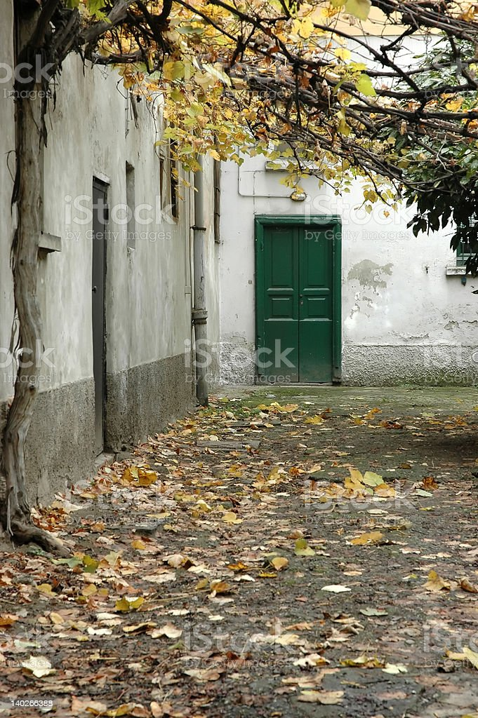 Autumn, green door stock photo