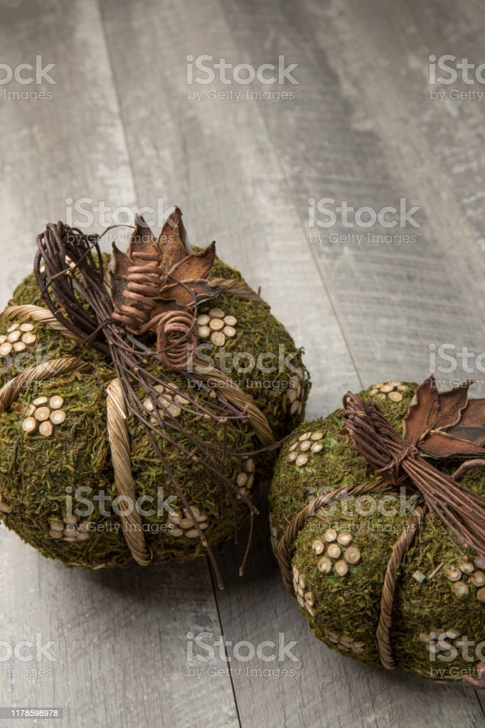 Autumn Green Moss Homemade Pumpkins With Pinecones On Wood