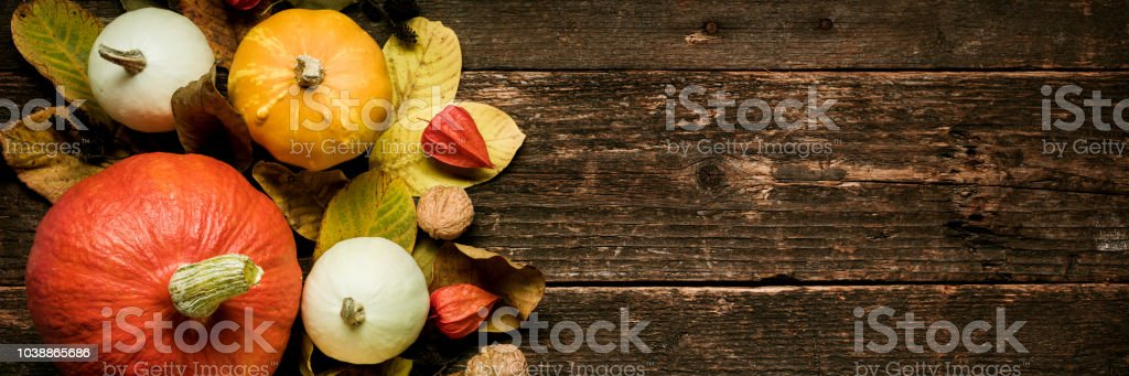 Autumn Harvest and Holiday still life. Happy Thanksgiving Banner. Selection of various pumpkins on dark wooden background. Autumn vegetables and seasonal decorations. stock photo