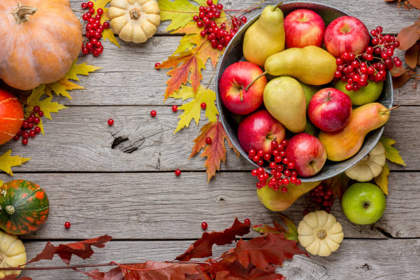 Autumn harvest and thanksgiving card background stock photo