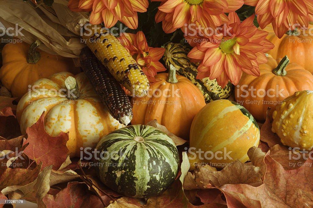 Autumn Harvest Crop Arrangement of Leaves, Pumpkin, Chrysanthemum, Corn, Squash stock photo