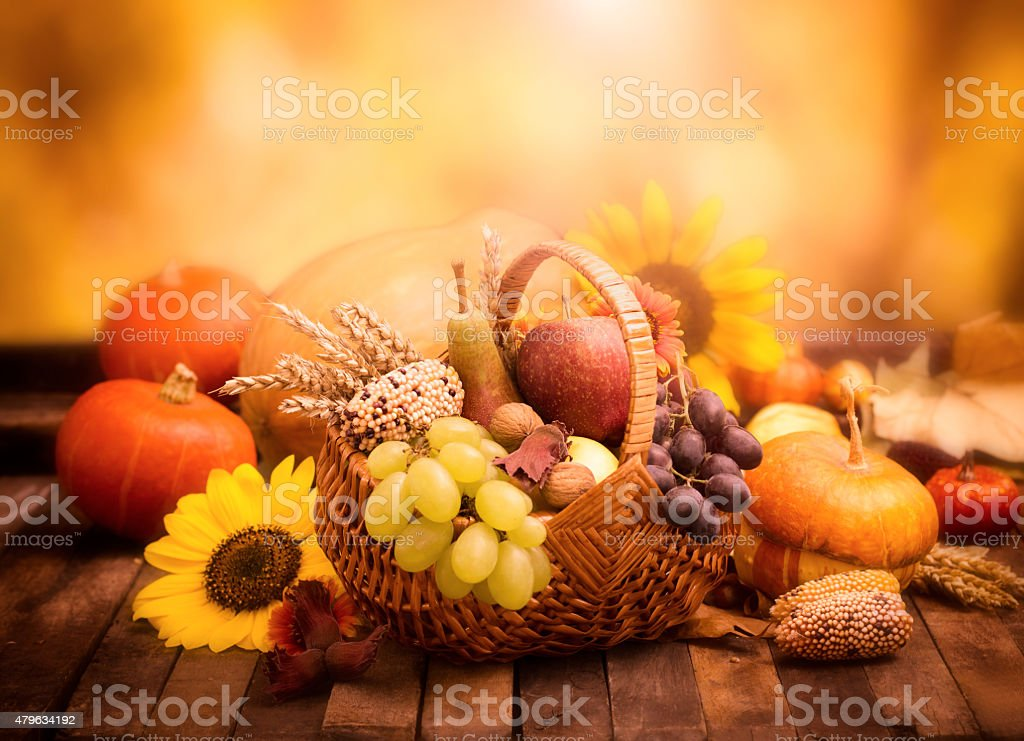 Autumn harvest - fresh autumn fruits in the basket stock photo