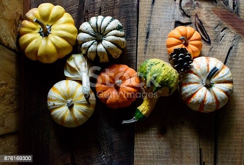istock Autumn harvest on rustic wood background Thanksgiving Photography 876169300