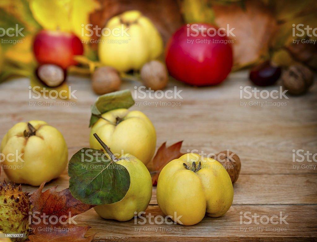 Autumn (fruits) harvest royalty-free stock photo