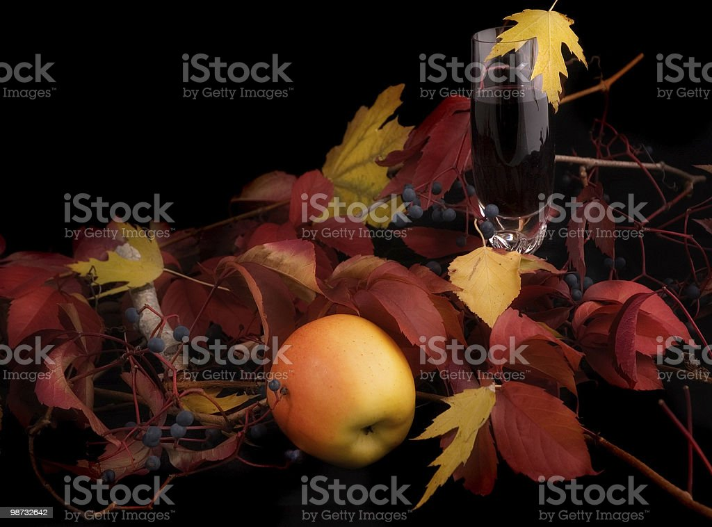 Autumn harvest royalty free stockfoto