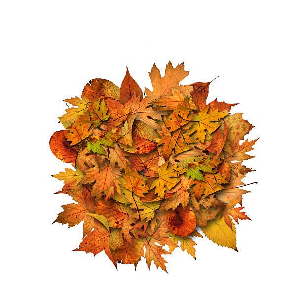 autumn heap - meerdere lagen effect stockfoto's en -beelden