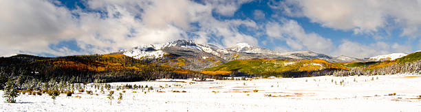 Autumn Highlands Aspens turning on the slopes of a mountain in Colorado. steamboat springs stock pictures, royalty-free photos & images