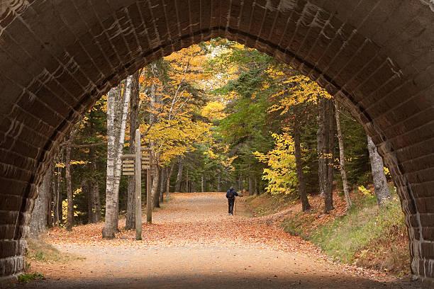 Autumn Hiker stock photo