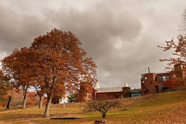 秋の丘 ストックフォト