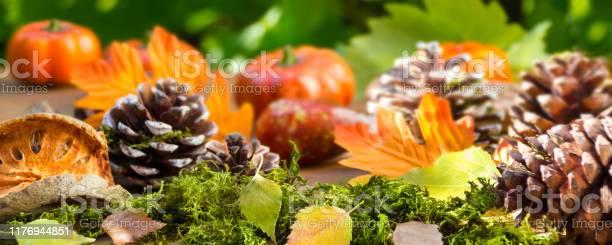 Autumn hokkaido pumpkin with decoration picture id1176944851?b=1&k=6&m=1176944851&s=612x612&h=bztblct3ecqta1nkdf0jpcek9cbwwof39vzduccovbi=