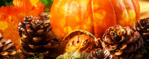 Autumn hokkaido pumpkin with decoration picture id1176945074?b=1&k=6&m=1176945074&s=612x612&w=0&h=lth4aq6yida1ptuipoo86ezhzvs9i1pdjl8k9huto6q=