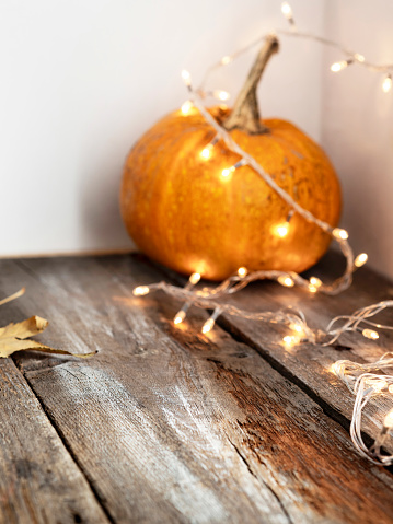 Christmas Lights, Decoration, Gourd, Halloween, Holiday - Event,food