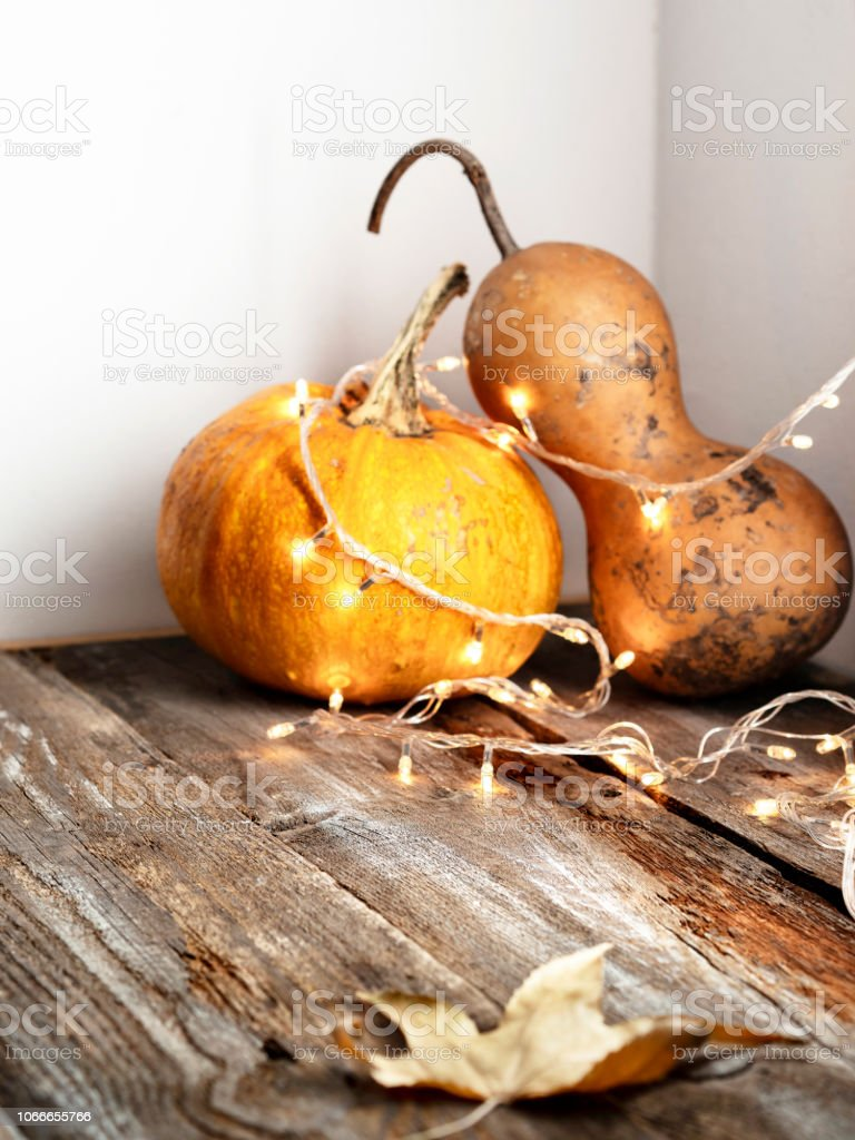 Christmas Lights Decoration Gourd Halloween Holiday