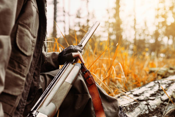 Autumn hunting season. Woman hunter with a gun. Hunting in the woods. Outdoor sports. Autumn hunting season. Woman hunter with a gun. Hunting in the woods. Outdoor sports. hunting blind stock pictures, royalty-free photos & images