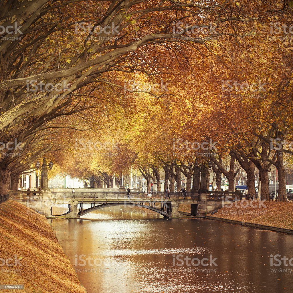 Autumn in a city stock photo