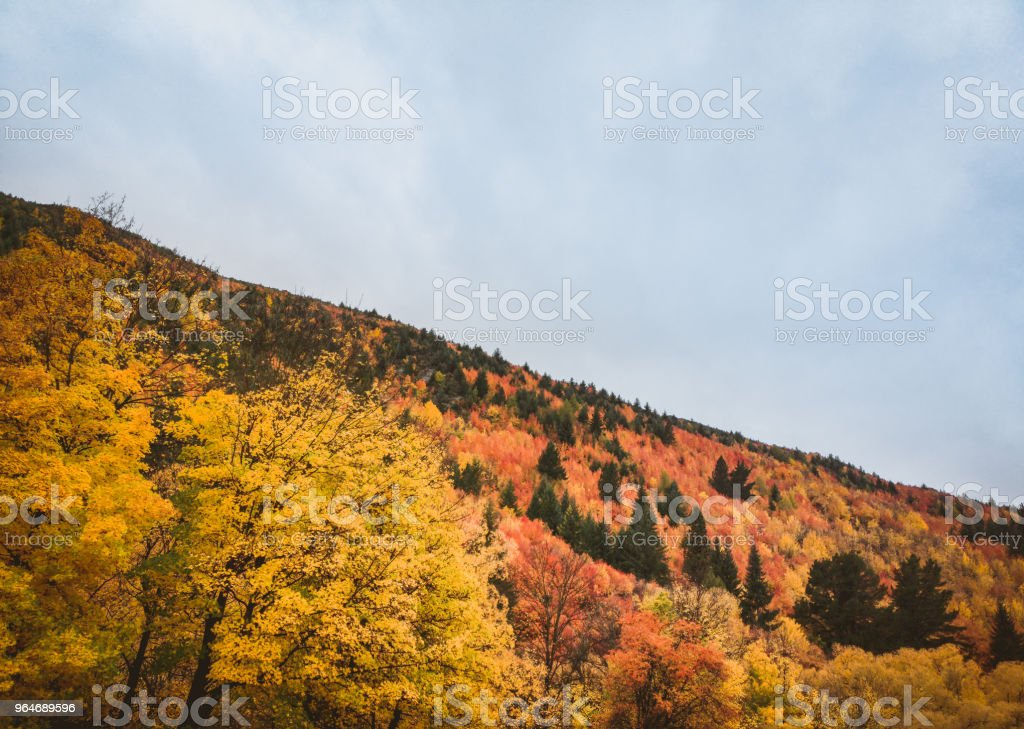 Autumn in arrowtown, Queenstown New Zealand landscape royalty-free stock photo