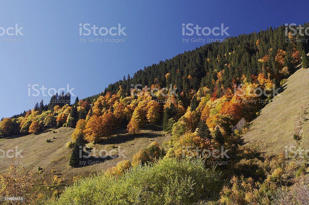 autumn in austria royalty-free stock photo