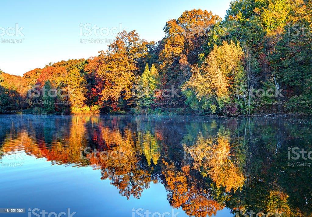 Autumn in Boston's Dorchester Neighborhood stock photo