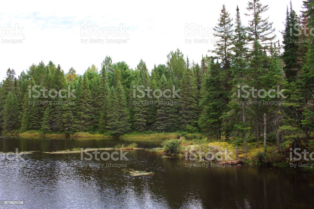 Autumn in Canada royalty-free stock photo