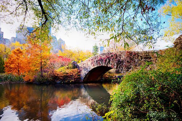 jesień w central park, nowy jork - central park manhattan zdjęcia i obrazy z banku zdjęć