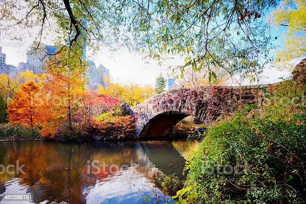 Autumn In Central Park New York Stock Photo - Download Image Now