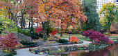 Central Park, New York City in autumn early in the morning