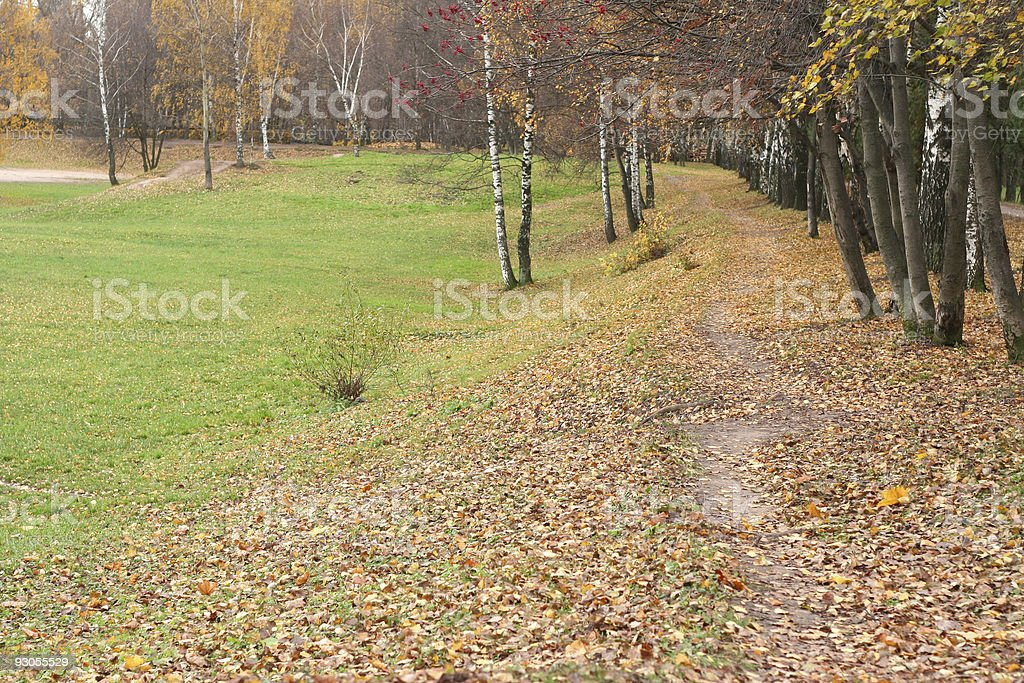 autumn in city park royalty-free stock photo