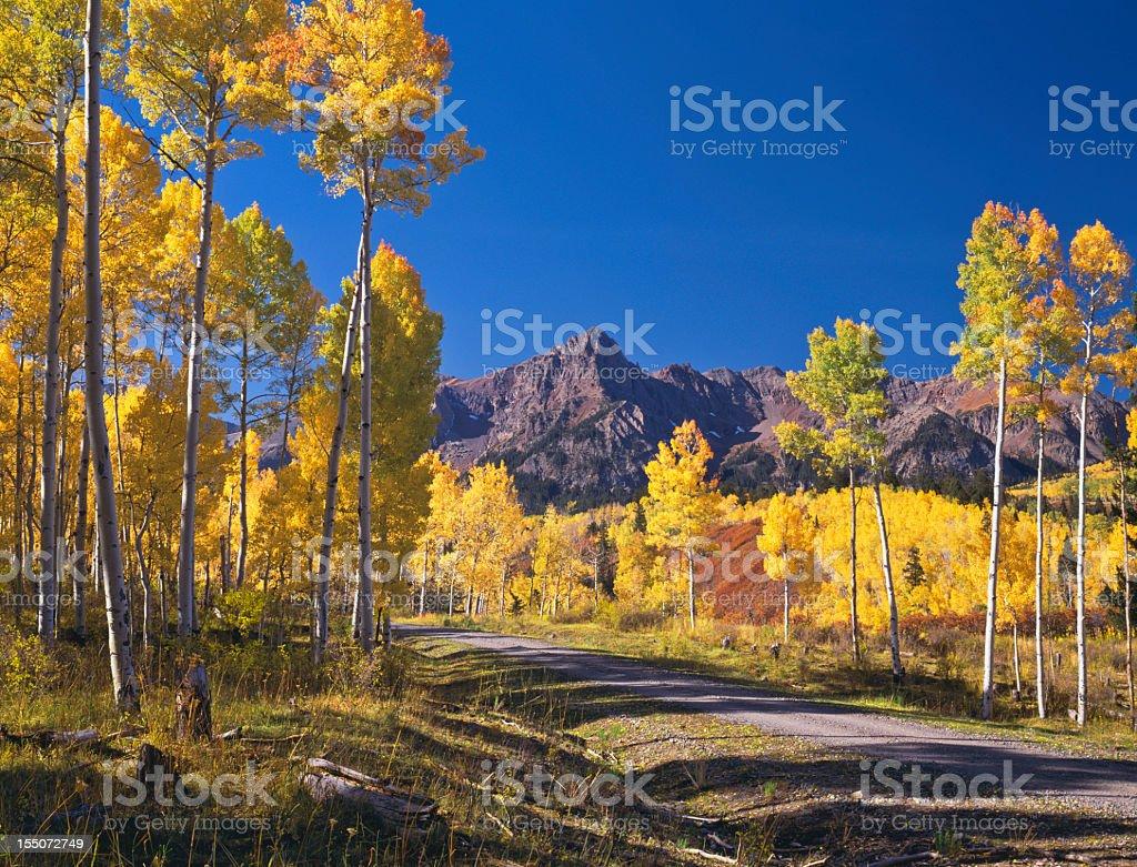 Autumn in Colorado royalty-free stock photo